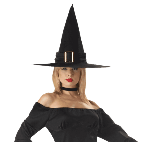 California Costumes Women's Elegant Witch Costume