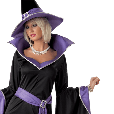 California Costumes Women's Incantasia, The Glamour Witch