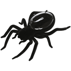 Creative Motion Solar Spider
