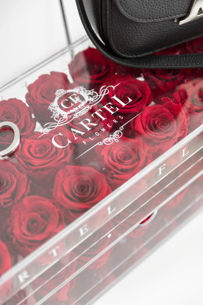 Large Acrylic Box with mirror base (Available Worldwide)