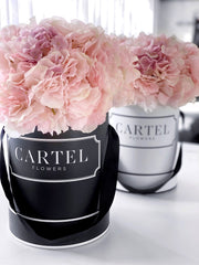 Limited! Cartel Box Refill - 'Pink Blush'