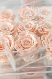 Small Acrylic Box - Choose your rose colour. (FREE GIFT BOX!)