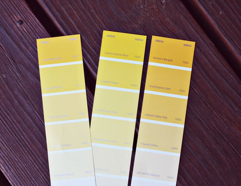 paint (urine) colour swatches