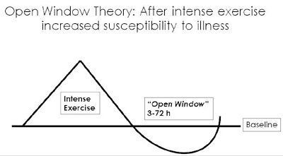 Open window theory graph