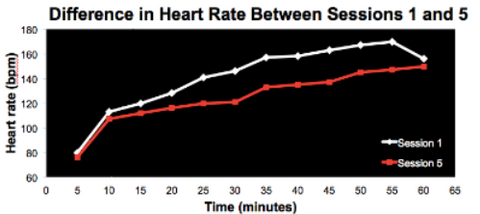 Difference in heart rate after heat training