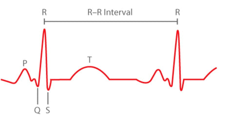 the r-r interval