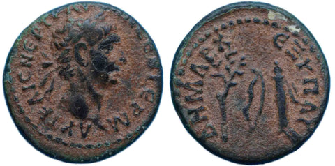 Roman Empire, Trajan (98-117), AE14 of Antioch, McAlee 503