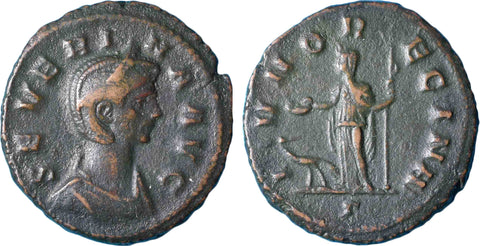 Roman Empire, Severina (274-275), Reduced Sestertius, Rome