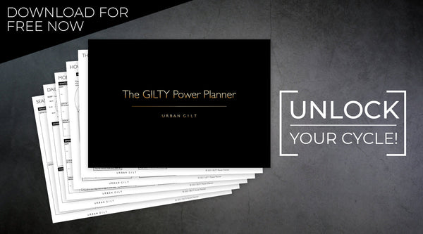 GILTY Power Planner download image