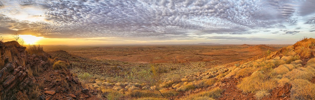Sunrise in the Outback