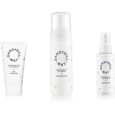 Exceptional Skin Care Trio
