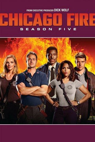 Chicago Fire: Season Five (2016) (THNR14) - Anthology Ottawa
