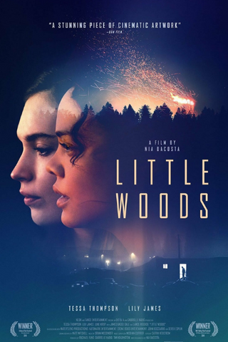 Little Woods (2018) (HNR)