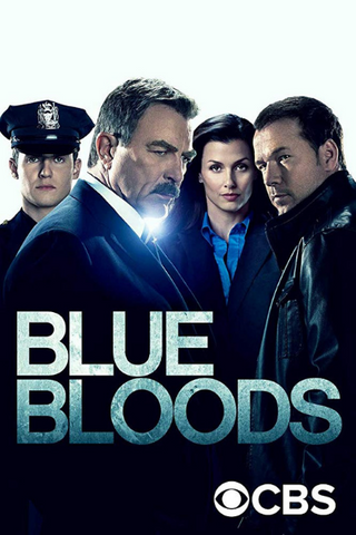 Blue Bloods: Season 9 (2018) (THNR14)