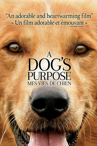 A Dog's Purpose (2017) (HNR) - Anthology Ottawa