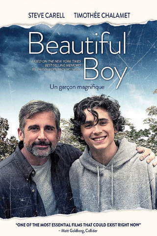 Beautiful Boy (2018) (HNR)