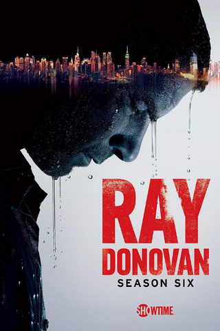 Ray Donovan: Season 6 (2018) (THNR14)