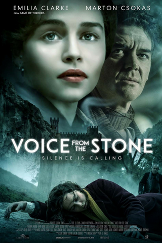 Voice From The Stone (2017) (HNR)