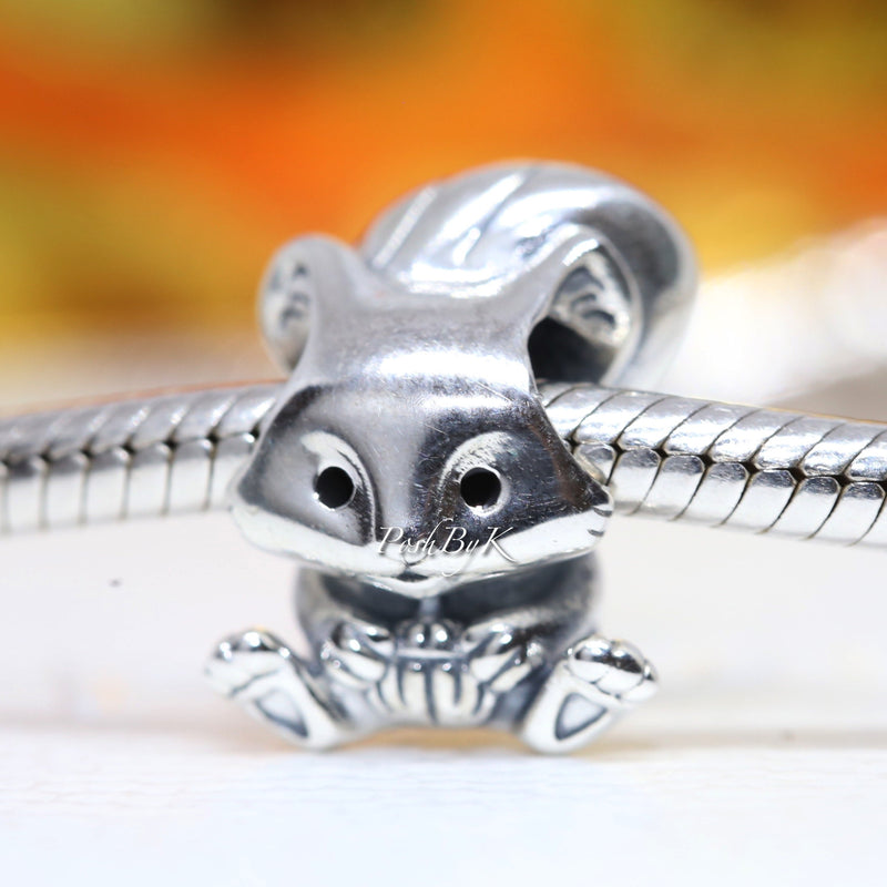 Cute Squirrel Charm 799105C01