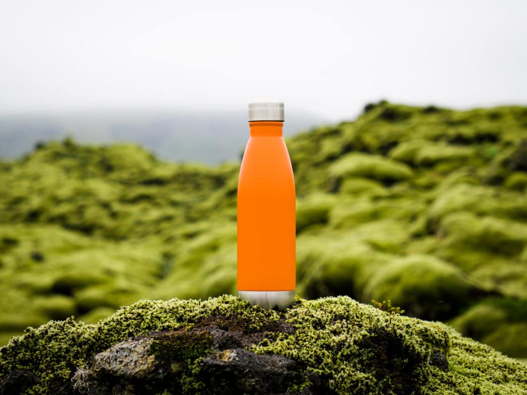 Reusable Water Bottles: Glass & Stainless Steel Take Over From Plastic