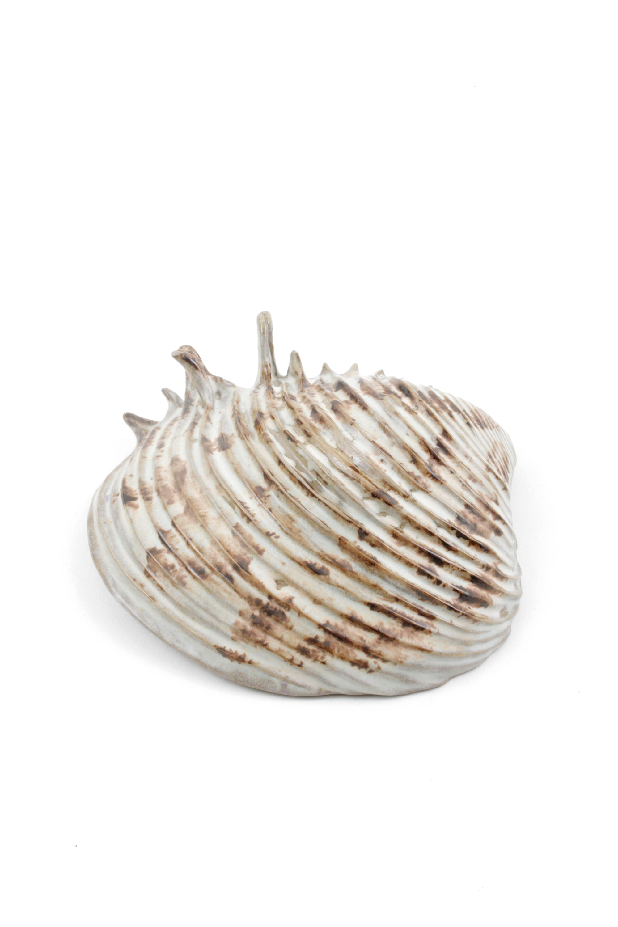 Yarnnakarn Oceanology Channeled Clam Shell Dish