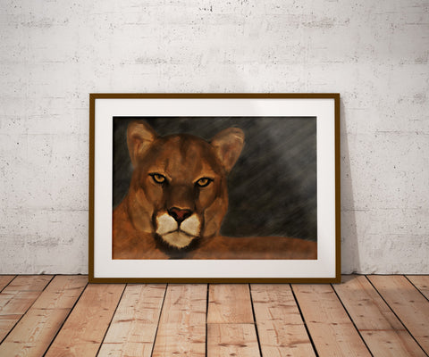 Mountain Lion - Limited Edition Signed and Numbered Fine Art Print