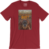 Orangutan - Why? - Men's/Unisex T-shirt