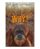 Orangutan - Why? - Women's crew neck T-shirt