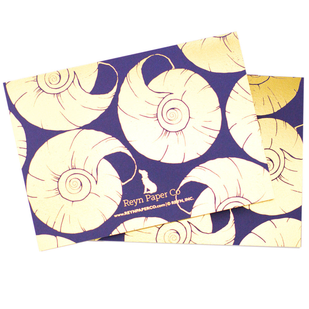 Nantucket Nautilus Pattern