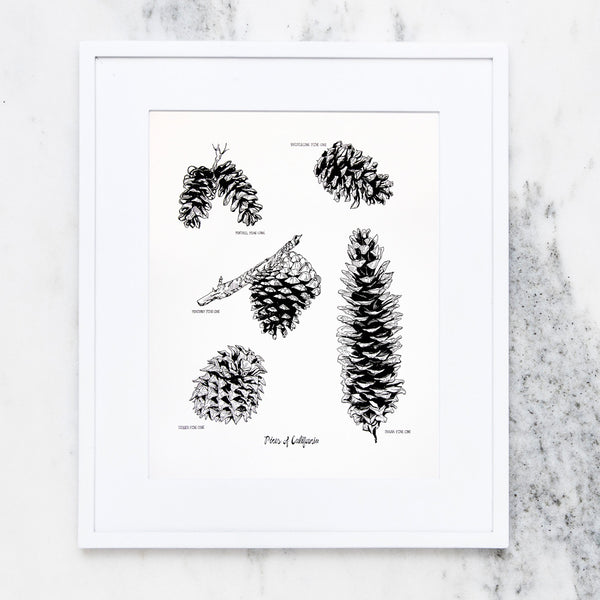 Pines of California Print