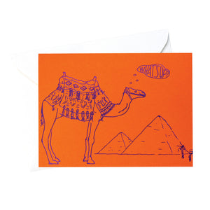 """What's Up"" Camel"