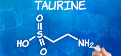 Taurine improves ED in experimental research