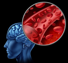 Can Young Blood Treat Alzheimer's Disease?