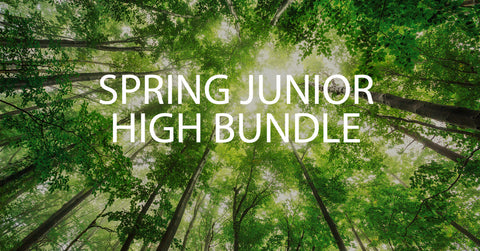 Spring Junior High Bundle