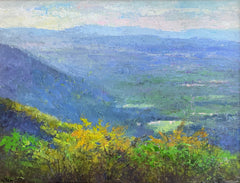 The Blue Ridge Mountains in May
