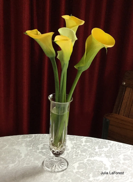 calla lilies from Julia's garden