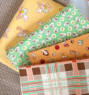 Lori Holt Farm Girl Vintage Sampler Quilt Sew Along with the Featherweight Shop