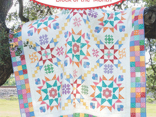 Load image into Gallery viewer, PATTERN BOOK, Aunt Grace Baskets of Scraps Block of the Month