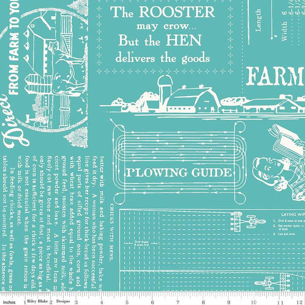 Fabric, Farm Girl Vintage by Lori Holt WIDE BACK 108