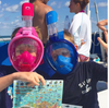 Shelling & Exploring The Ocean With Kids