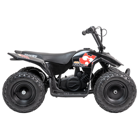GS300 Electric kids quad