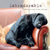 """Labradorable"" by Villager Jim"