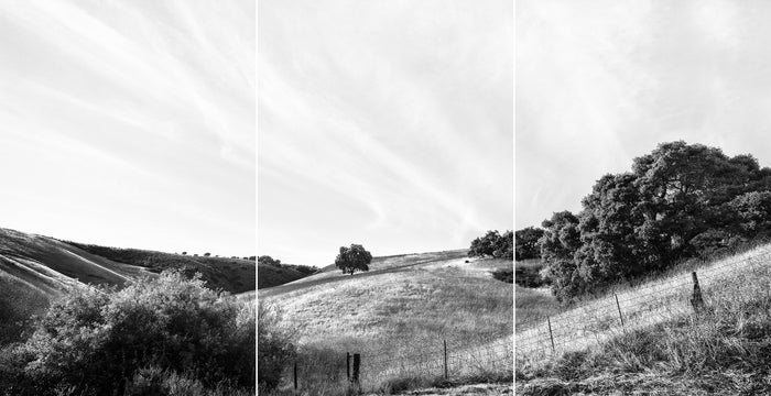 | ROAD TO JALAMA | TRIPTYCH