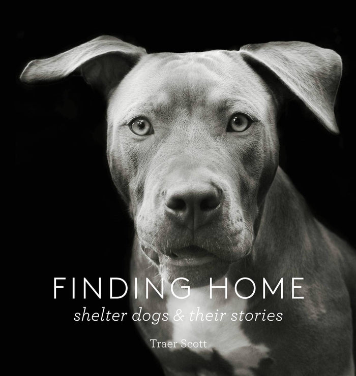 Finding Home - Shelter Dogs and Their Stories