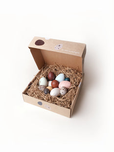 A Dozen Bird Eggs in Box