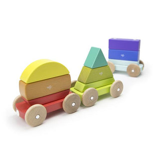 Tegu Magnetic Shapes Train