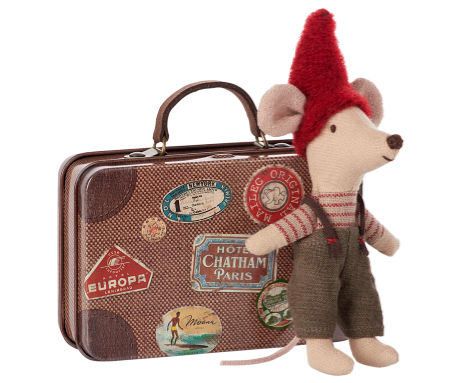 Winter Mouse in Suitcase