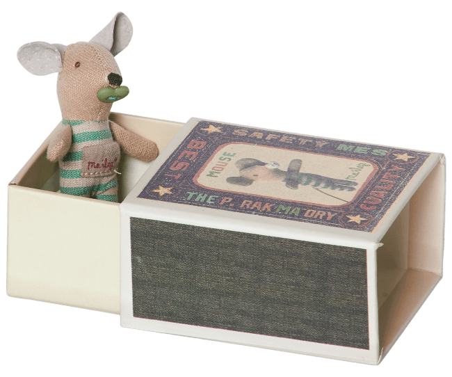 Baby Boy Mouse in Matchbox