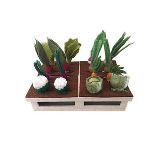 Papoose Mini Grow A Garden Set