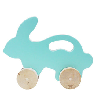 Teal Bunny Push Toy